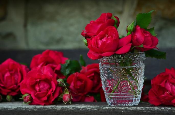 roses-821705_1920.jpg